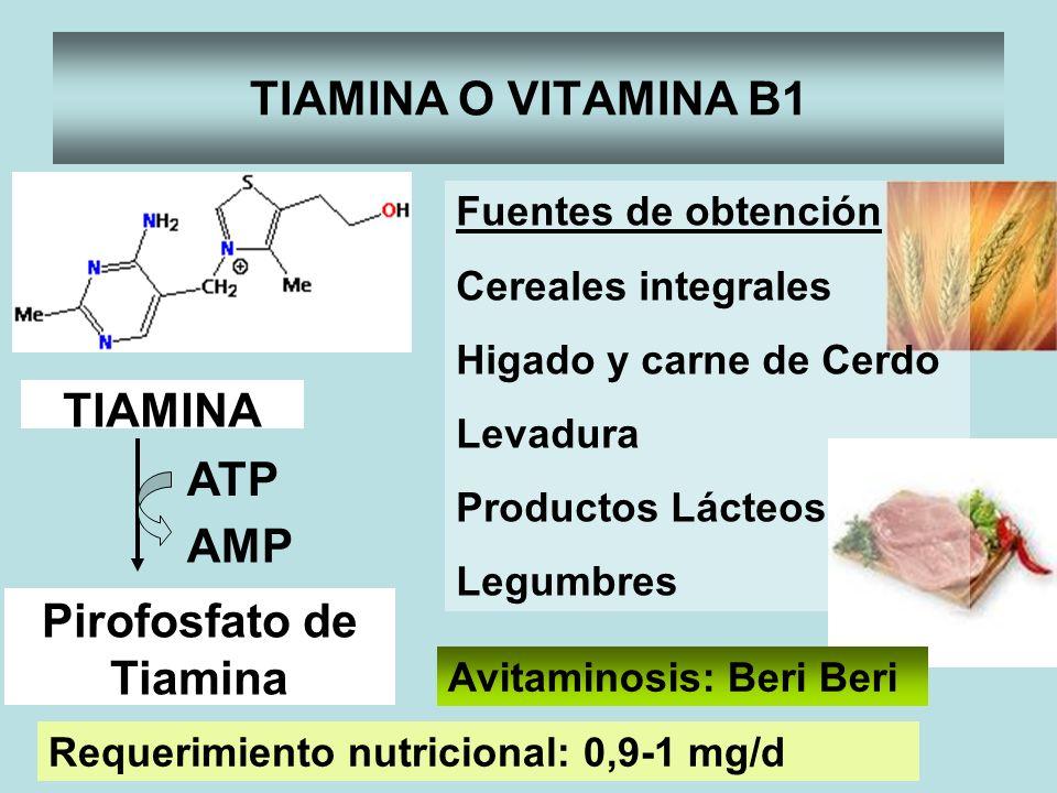 Pirofosfato de Tiamina