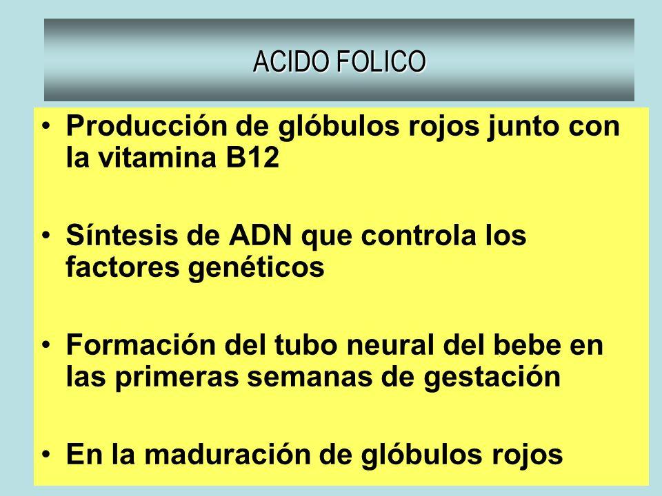 ACIDO FOLICO Producción de glóbulos rojos junto con la vitamina B12. Síntesis de ADN que controla los factores genéticos.