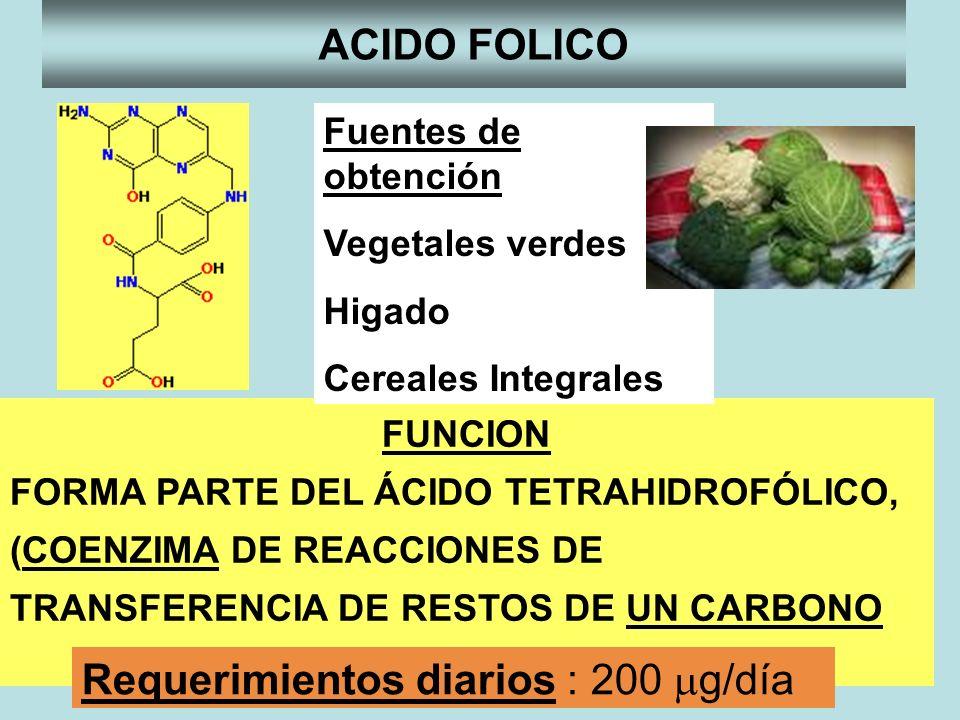 Requerimientos diarios : 200 mg/día