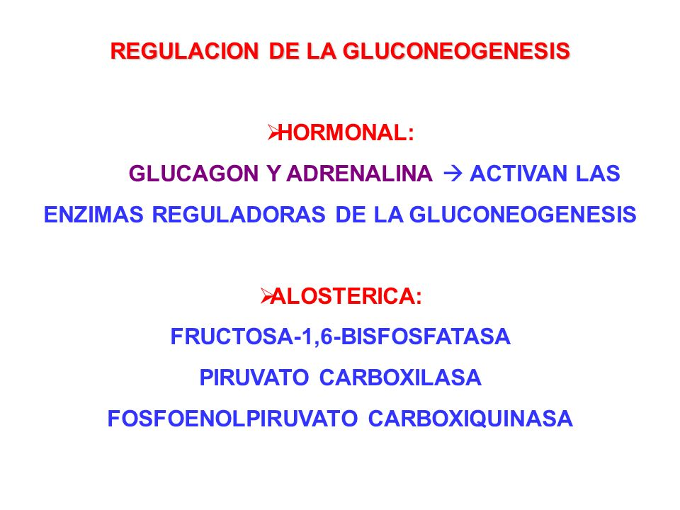 REGULACION DE LA GLUCONEOGENESIS