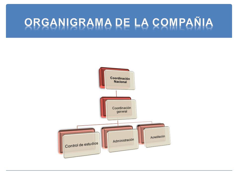 ORGANIGRAMA DE LA COMPAÑIA
