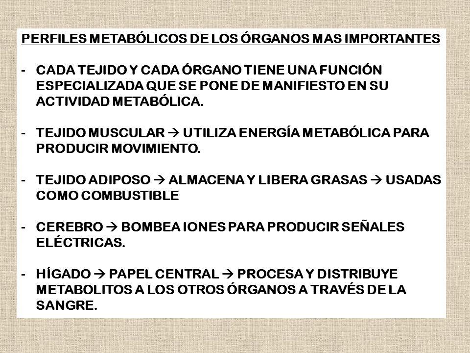 PERFILES METABÓLICOS DE LOS ÓRGANOS MAS IMPORTANTES