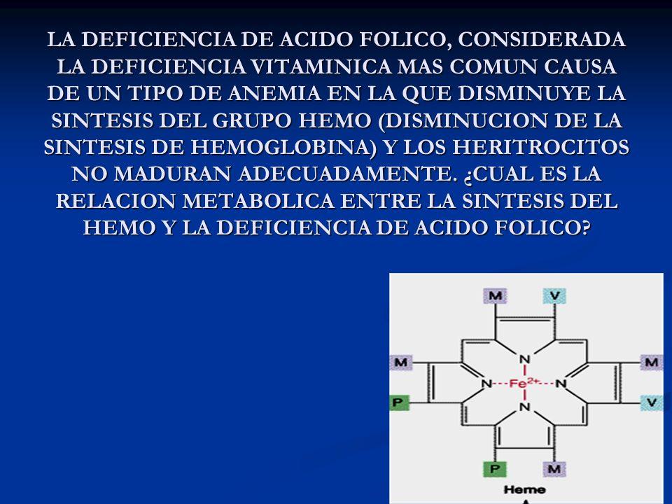 LA DEFICIENCIA DE ACIDO FOLICO, CONSIDERADA LA DEFICIENCIA VITAMINICA MAS COMUN CAUSA DE UN TIPO DE ANEMIA EN LA QUE DISMINUYE LA SINTESIS DEL GRUPO HEMO (DISMINUCION DE LA SINTESIS DE HEMOGLOBINA) Y LOS HERITROCITOS NO MADURAN ADECUADAMENTE.