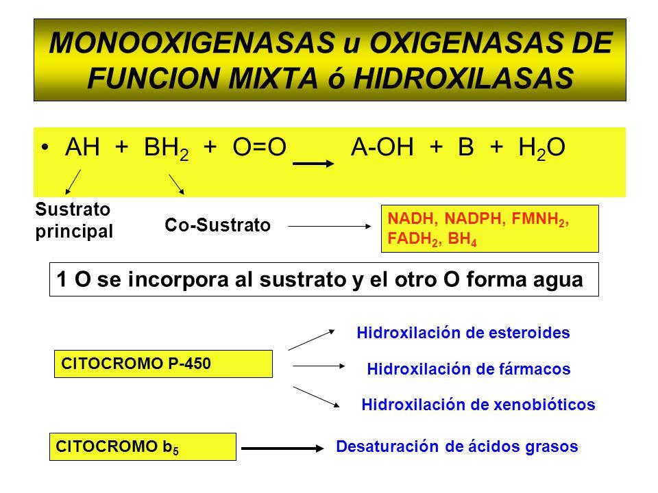 MONOOXIGENASAS u OXIGENASAS DE FUNCION MIXTA ó HIDROXILASAS