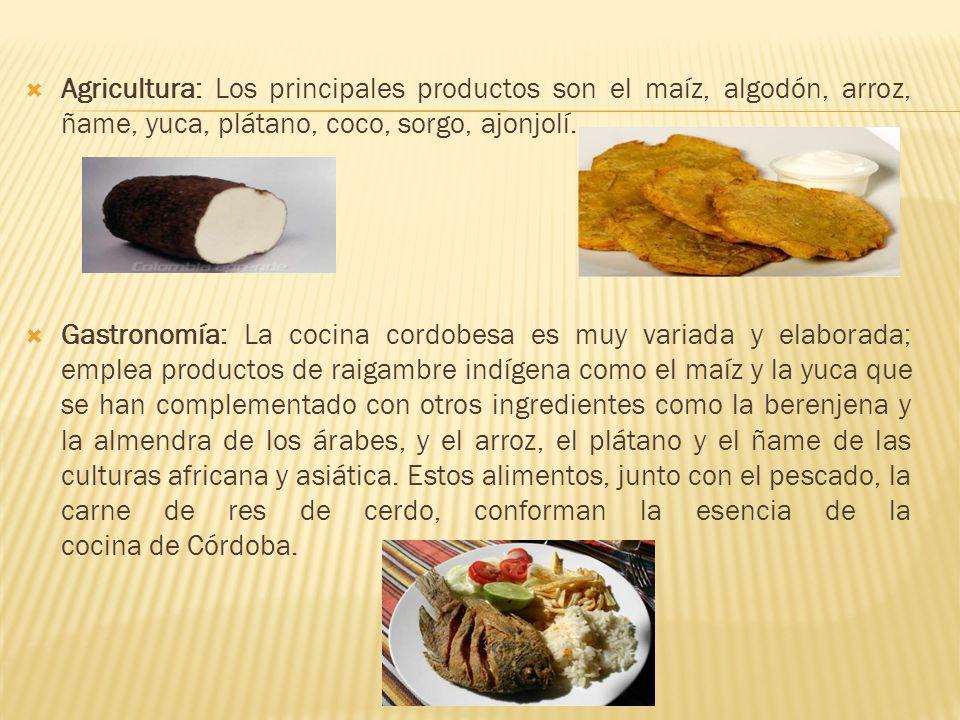Agricultura: Los principales productos son el maíz, algodón, arroz, ñame, yuca, plátano, coco, sorgo, ajonjolí.