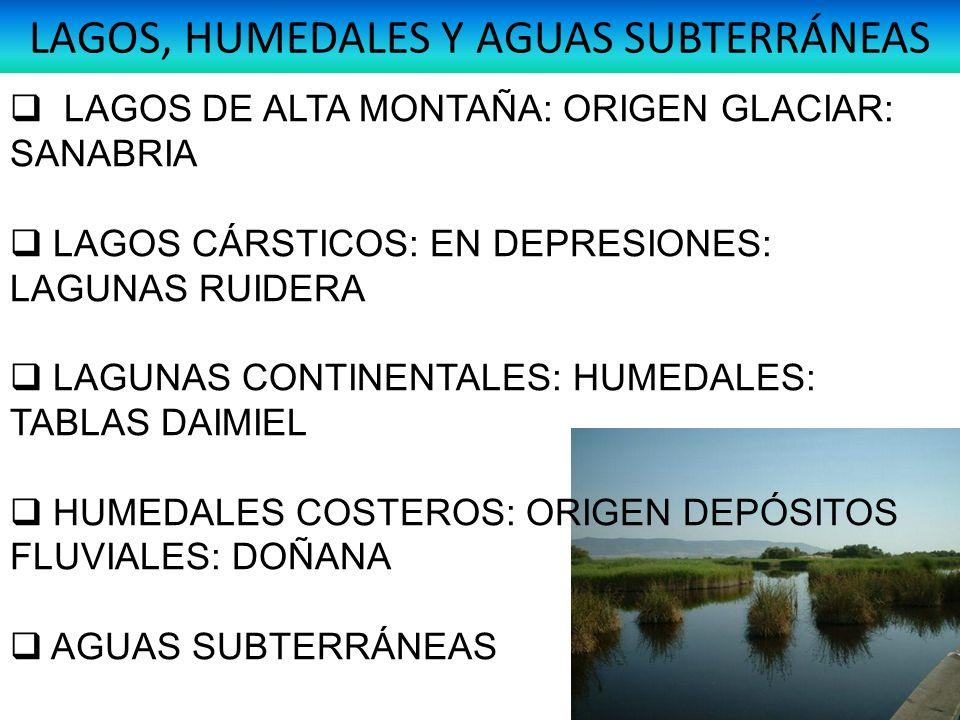 LAGOS, HUMEDALES Y AGUAS SUBTERRÁNEAS