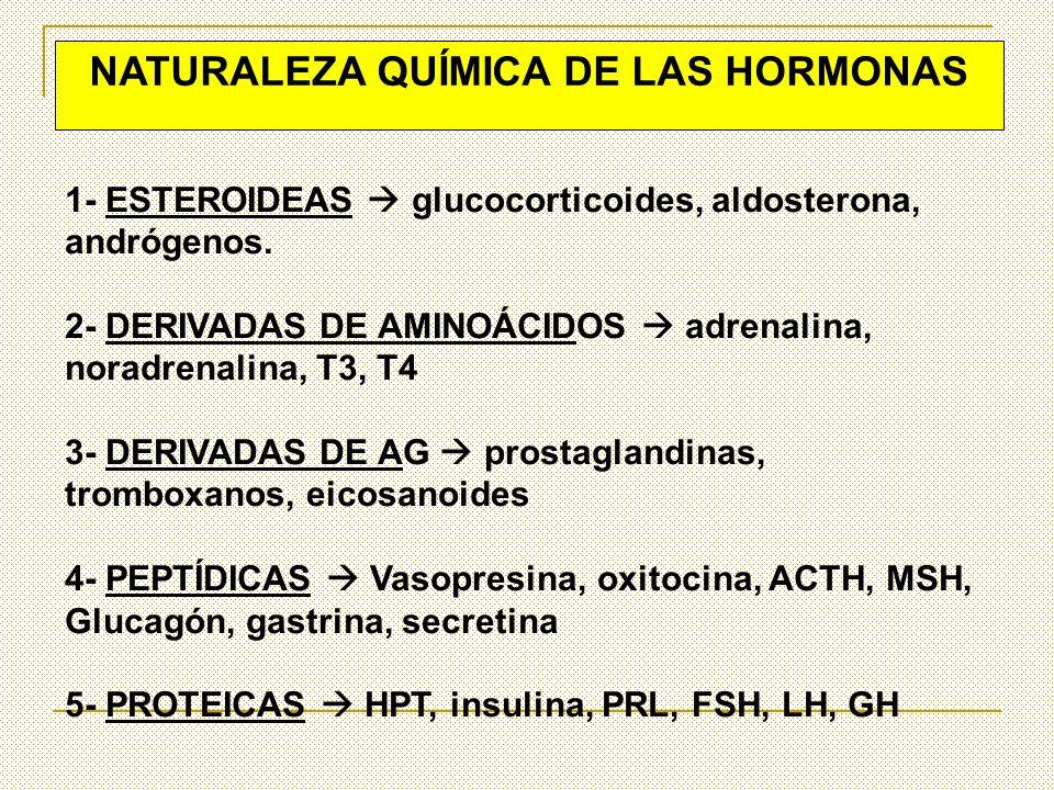 NATURALEZA QUÍMICA DE LAS HORMONAS