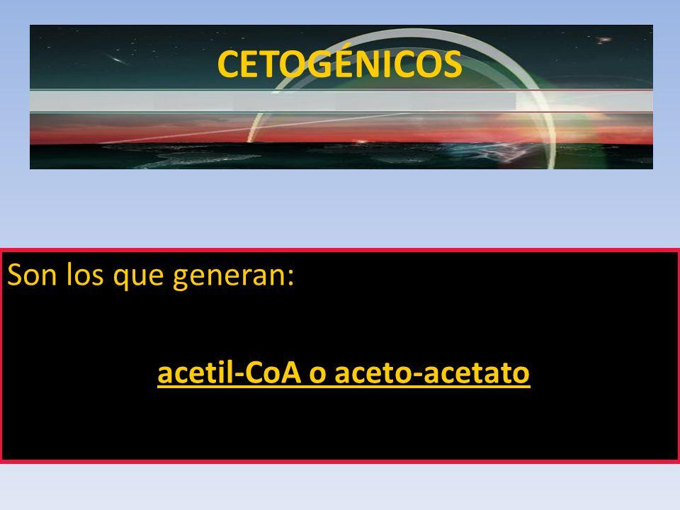 acetil-CoA o aceto-acetato