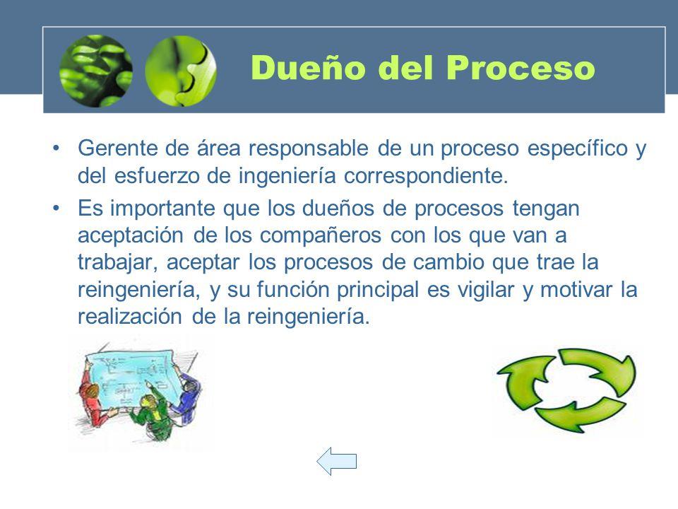 Dueño del Proceso Gerente de área responsable de un proceso específico y del esfuerzo de ingeniería correspondiente.