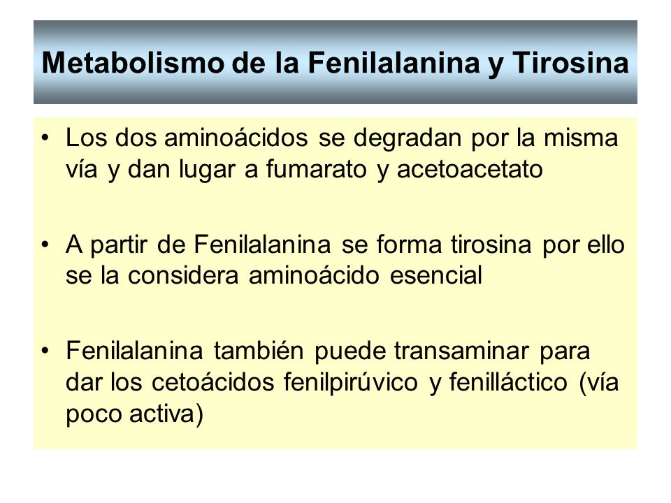 Metabolismo de la Fenilalanina y Tirosina