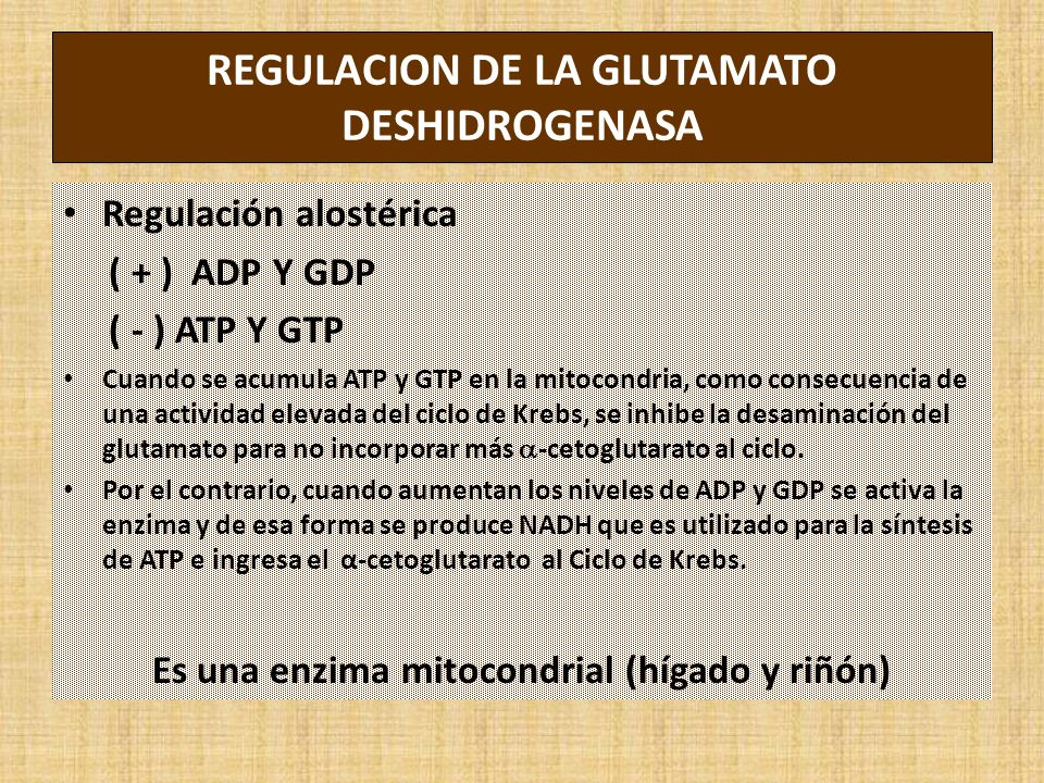 REGULACION DE LA GLUTAMATO DESHIDROGENASA