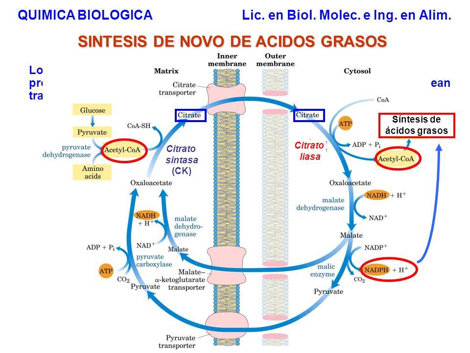 SINTESIS DE NOVO DE ACIDOS GRASOS Síntesis de ácidos grasos