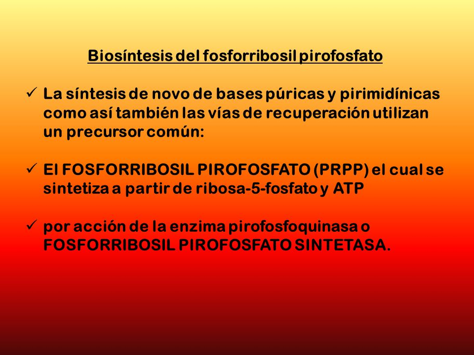 Biosíntesis del fosforribosil pirofosfato