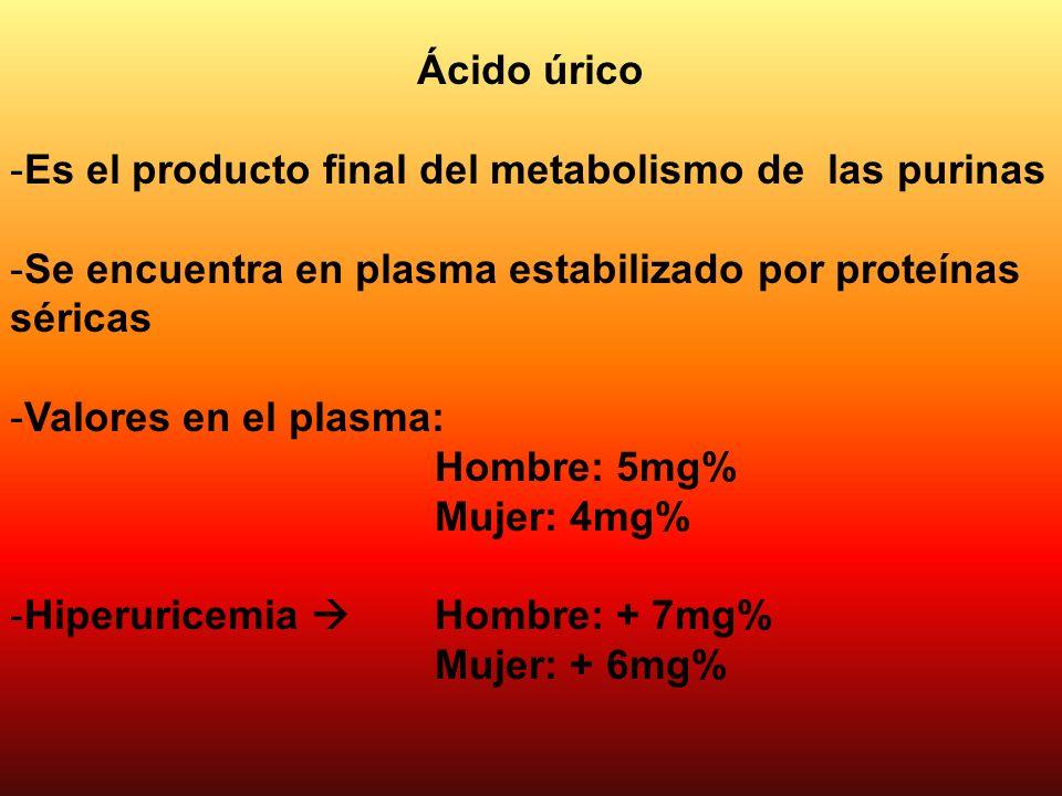 Ácido úrico Es el producto final del metabolismo de las purinas. Se encuentra en plasma estabilizado por proteínas séricas.