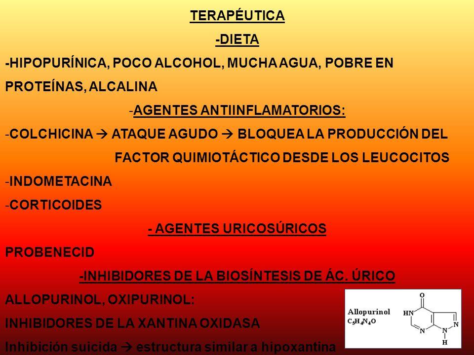-HIPOPURÍNICA, POCO ALCOHOL, MUCHA AGUA, POBRE EN PROTEÍNAS, ALCALINA