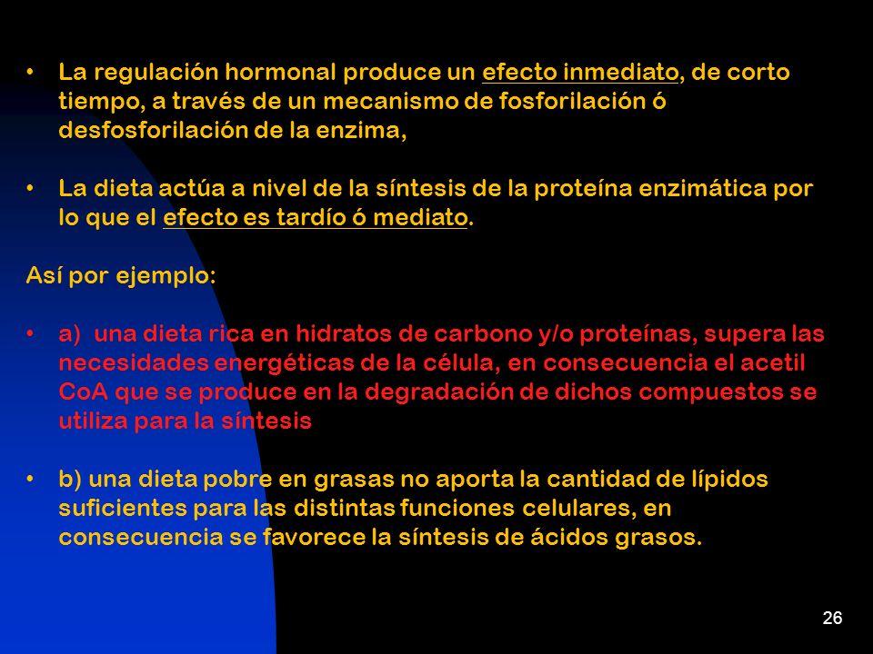 La regulación hormonal produce un efecto inmediato, de corto tiempo, a través de un mecanismo de fosforilación ó desfosforilación de la enzima,