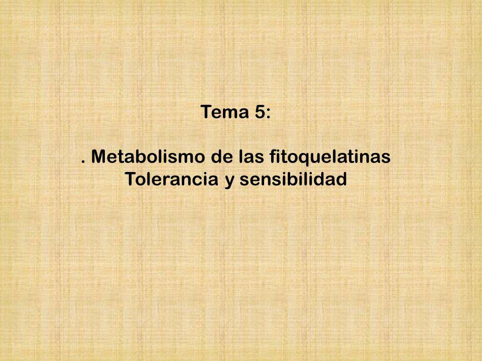 . Metabolismo de las fitoquelatinas Tolerancia y sensibilidad