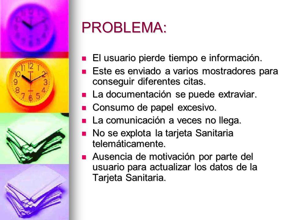 PROBLEMA: El usuario pierde tiempo e información.