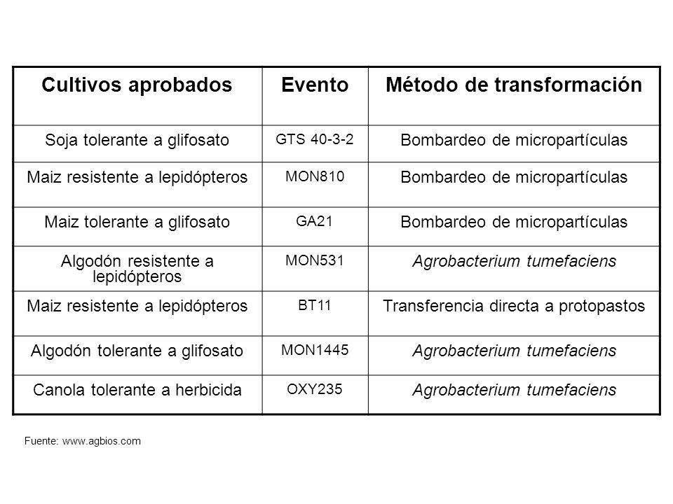 Método de transformación