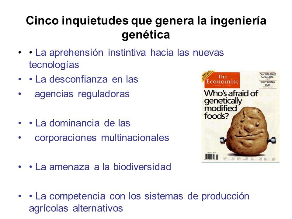 Cinco inquietudes que genera la ingeniería genética