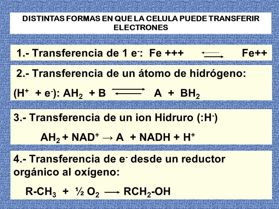 DISTINTAS FORMAS EN QUE LA CELULA PUEDE TRANSFERIR ELECTRONES