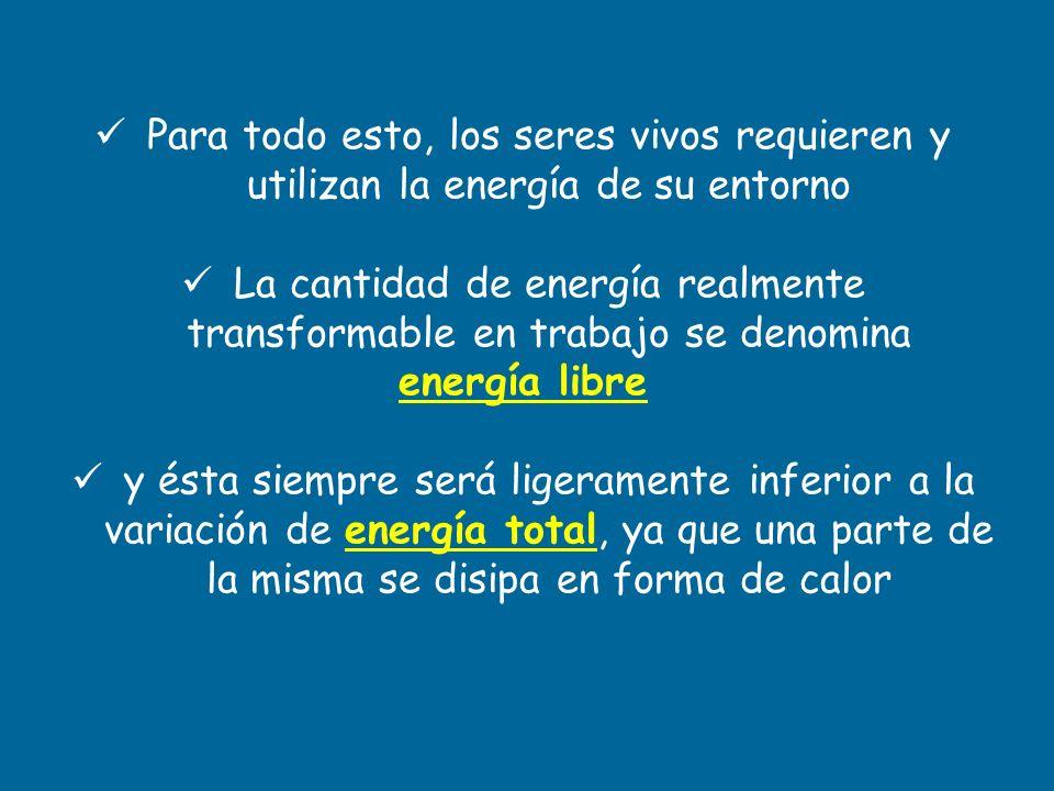 La cantidad de energía realmente transformable en trabajo se denomina