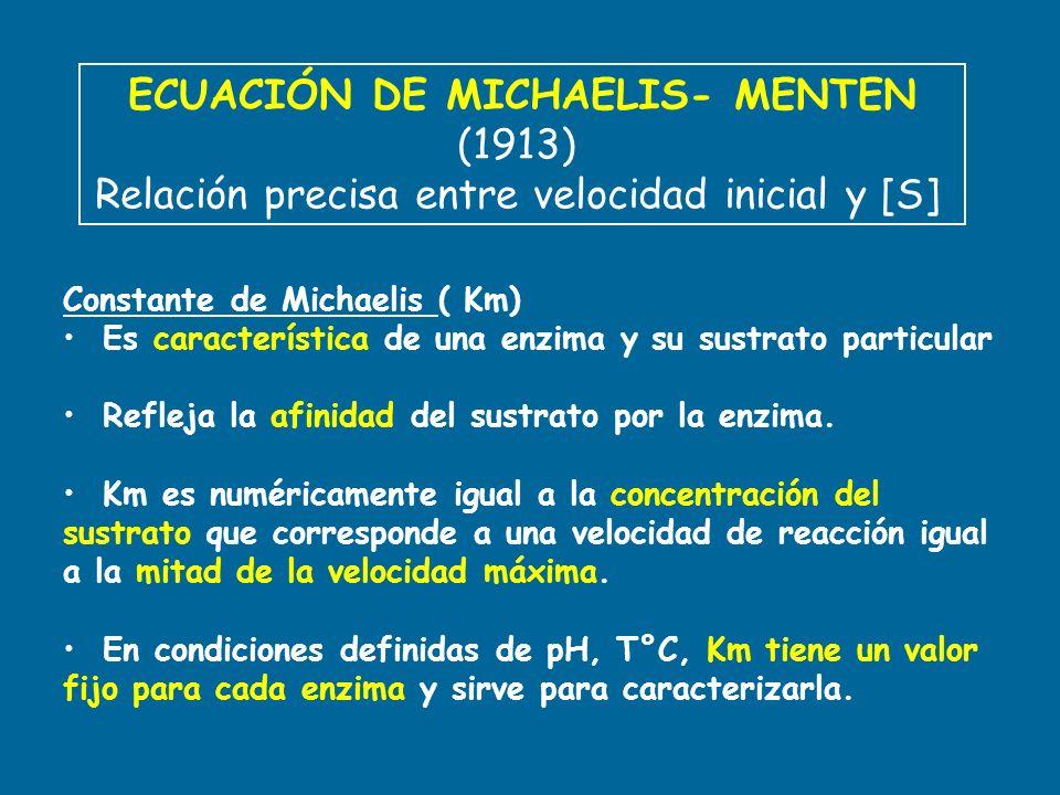 ECUACIÓN DE MICHAELIS- MENTEN