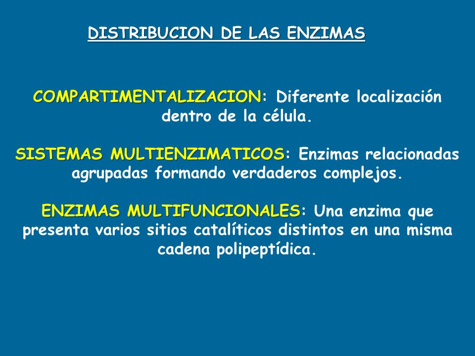 DISTRIBUCION DE LAS ENZIMAS