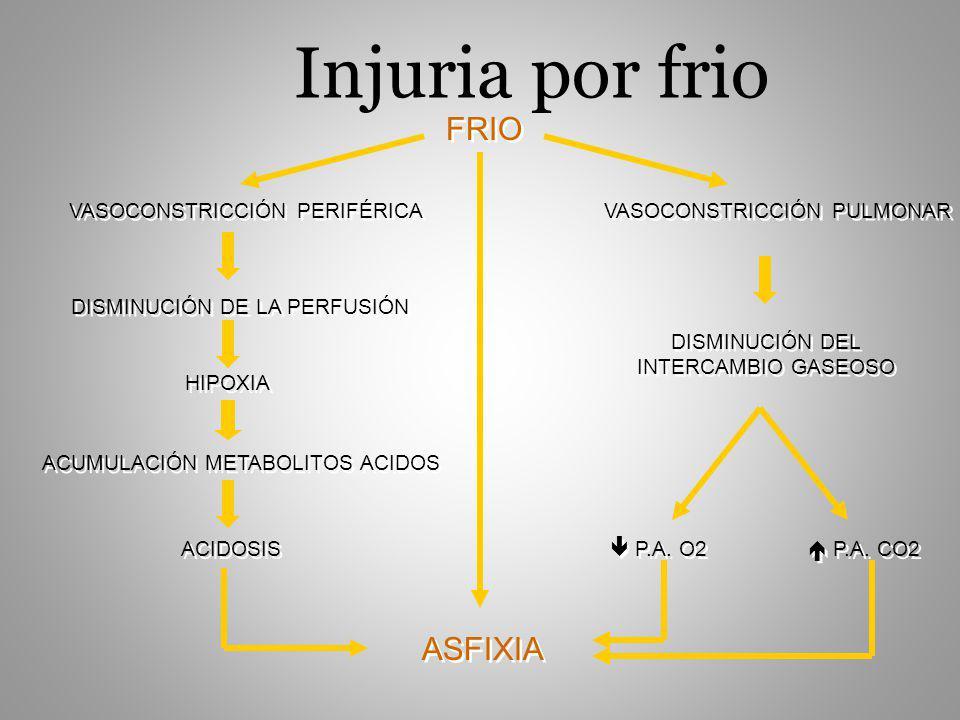 Injuria por frio FRIO ASFIXIA VASOCONSTRICCIÓN PERIFÉRICA