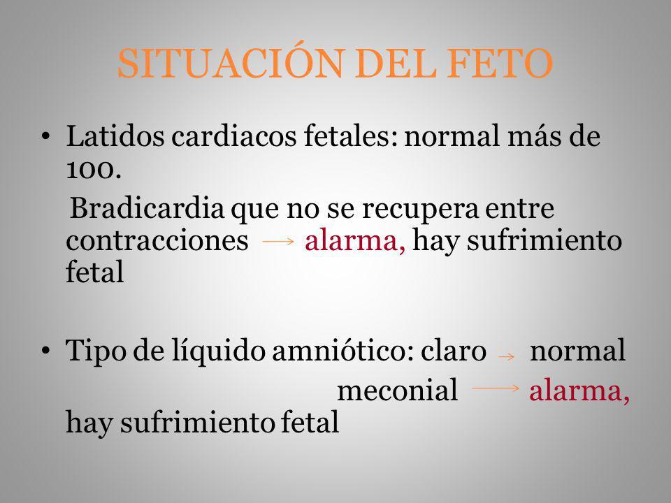 SITUACIÓN DEL FETO Latidos cardiacos fetales: normal más de 100.