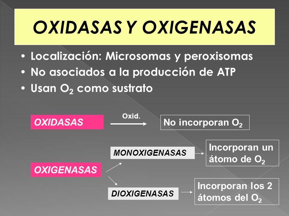 OXIDASAS Y OXIGENASAS Localización: Microsomas y peroxisomas