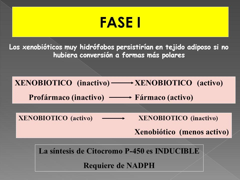 La síntesis de Citocromo P-450 es INDUCIBLE