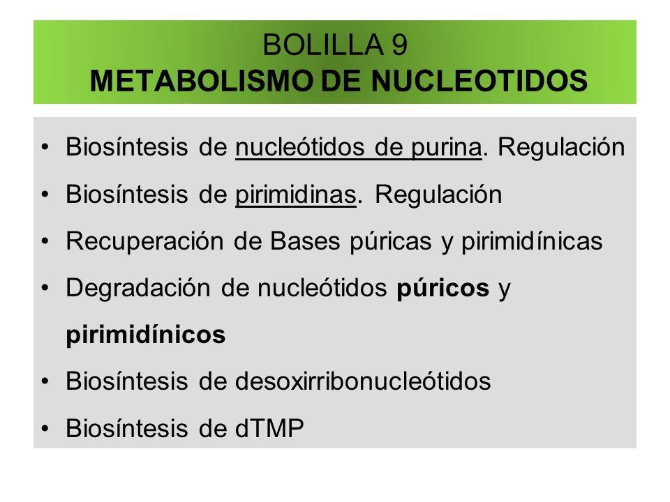 BOLILLA 9 METABOLISMO DE NUCLEOTIDOS