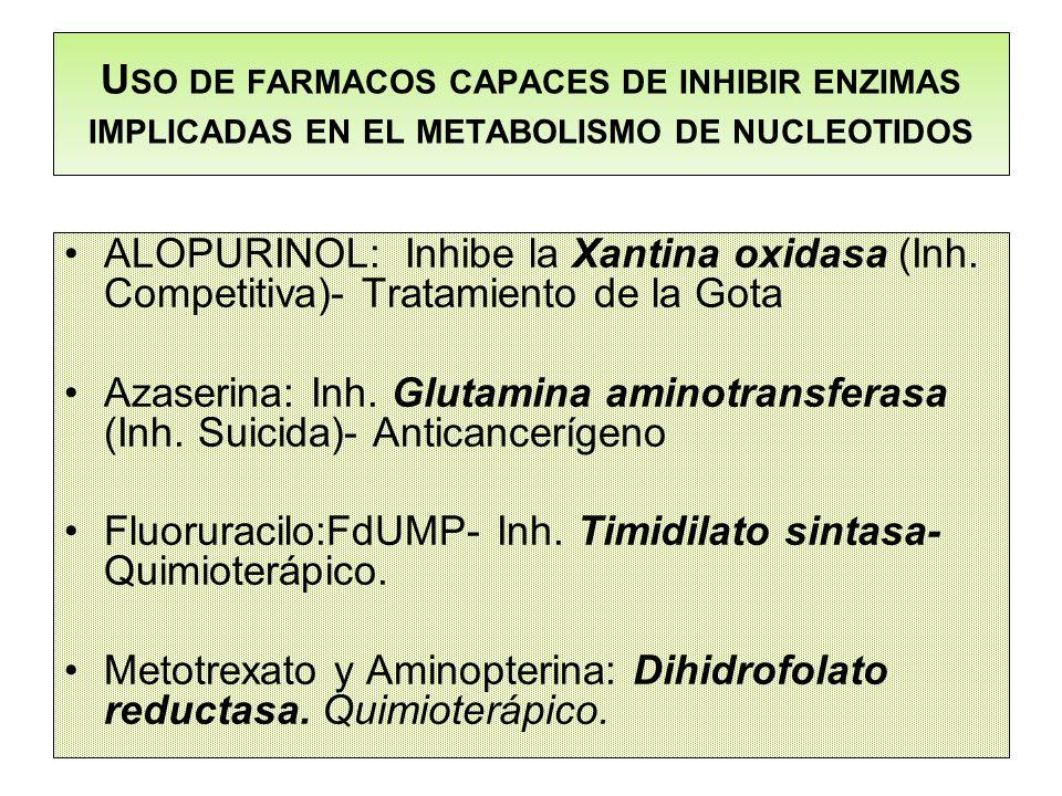 Uso de farmacos capaces de inhibir enzimas implicadas en el metabolismo de nucleotidos