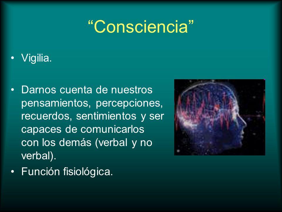 Consciencia Vigilia.
