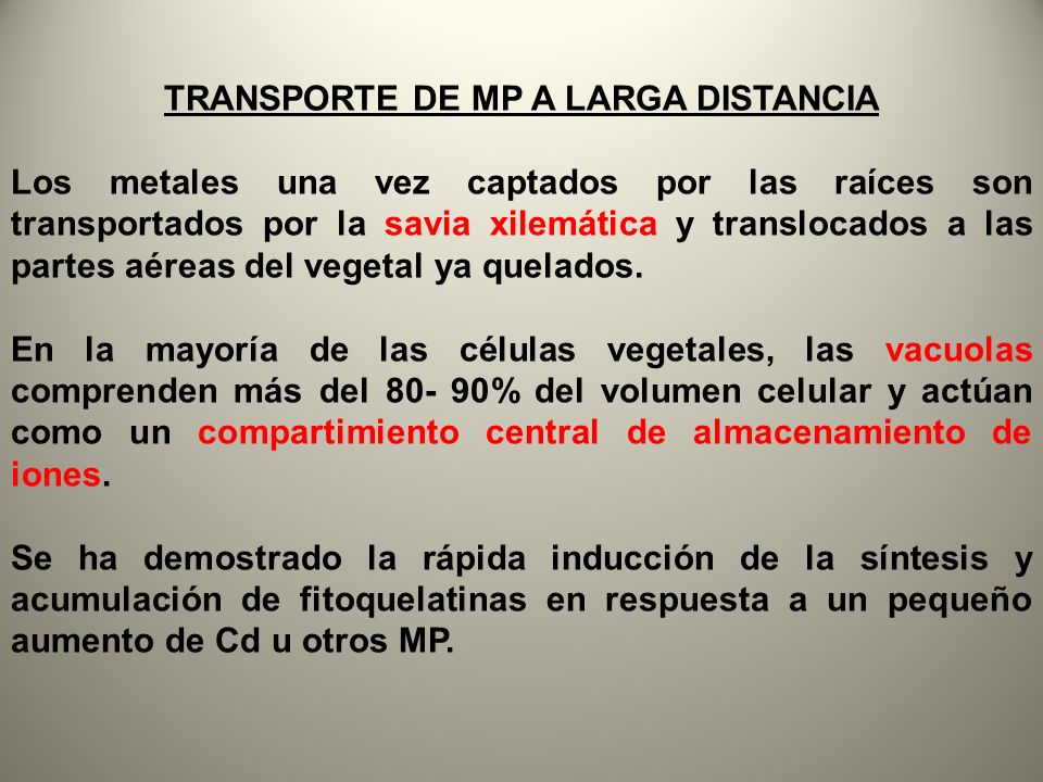 TRANSPORTE DE MP A LARGA DISTANCIA