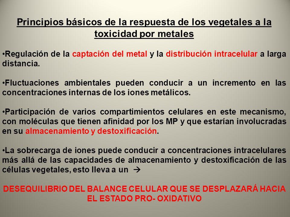 Principios básicos de la respuesta de los vegetales a la toxicidad por metales