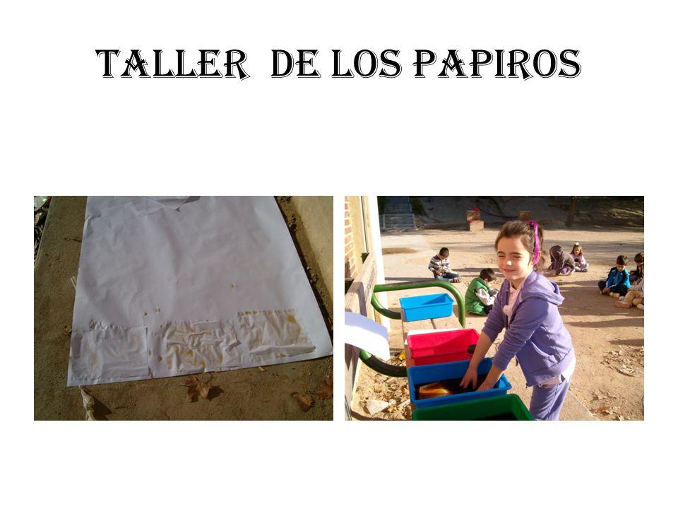 TALLER DE LOS PAPIROS