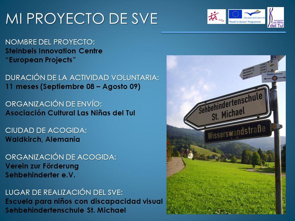 MI PROYECTO DE SVE NOMBRE DEL PROYECTO: Steinbeis Innovation Centre