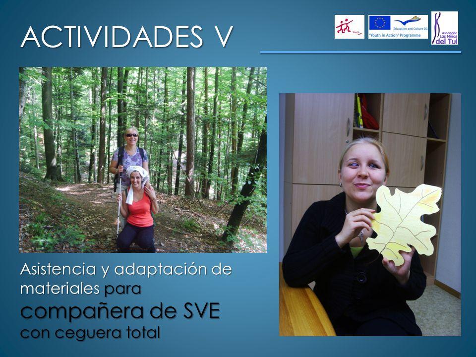 ACTIVIDADES V Asistencia y adaptación de materiales para compañera de SVE con ceguera total