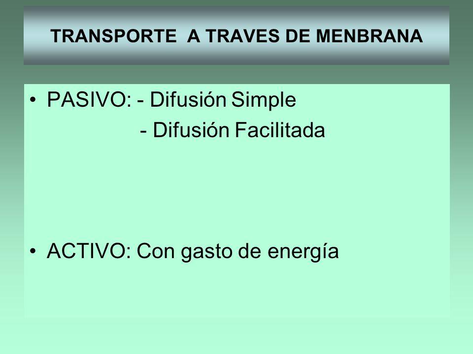 TRANSPORTE A TRAVES DE MENBRANA