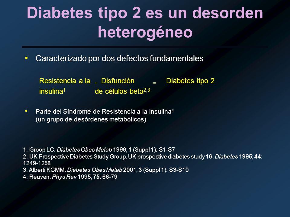 Diabetes tipo 2 es un desorden heterogéneo