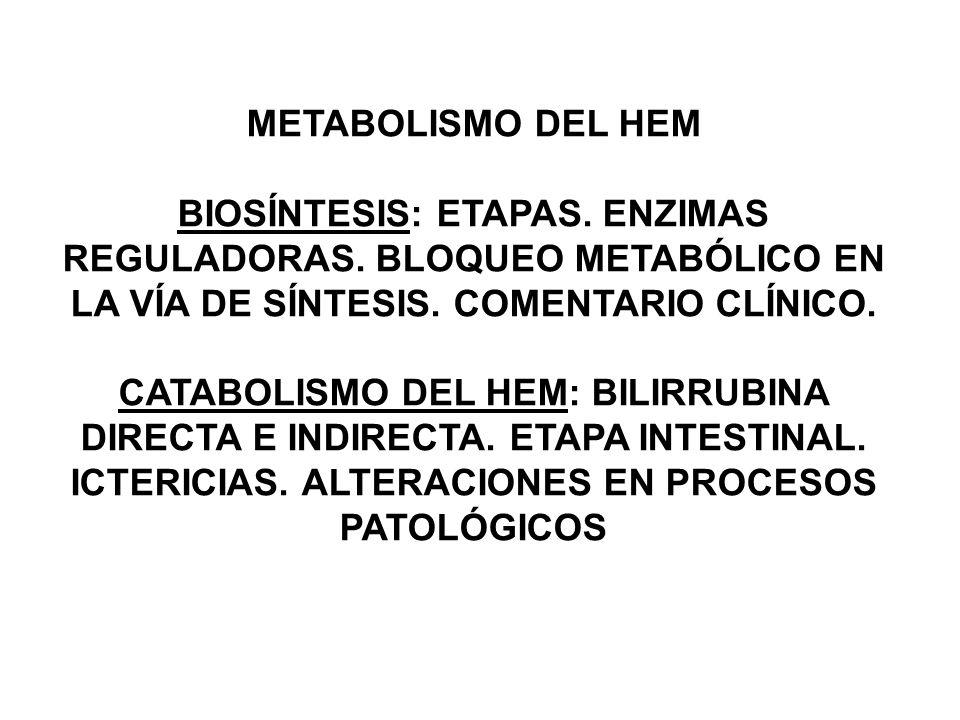 METABOLISMO DEL HEM BIOSÍNTESIS: ETAPAS. ENZIMAS REGULADORAS. BLOQUEO METABÓLICO EN LA VÍA DE SÍNTESIS. COMENTARIO CLÍNICO.
