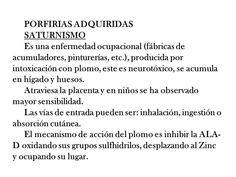 PORFIRIAS ADQUIRIDAS SATURNISMO.