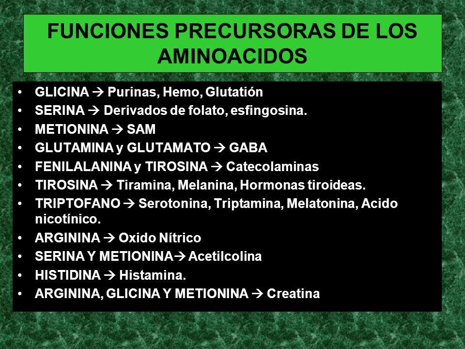 FUNCIONES PRECURSORAS DE LOS AMINOACIDOS