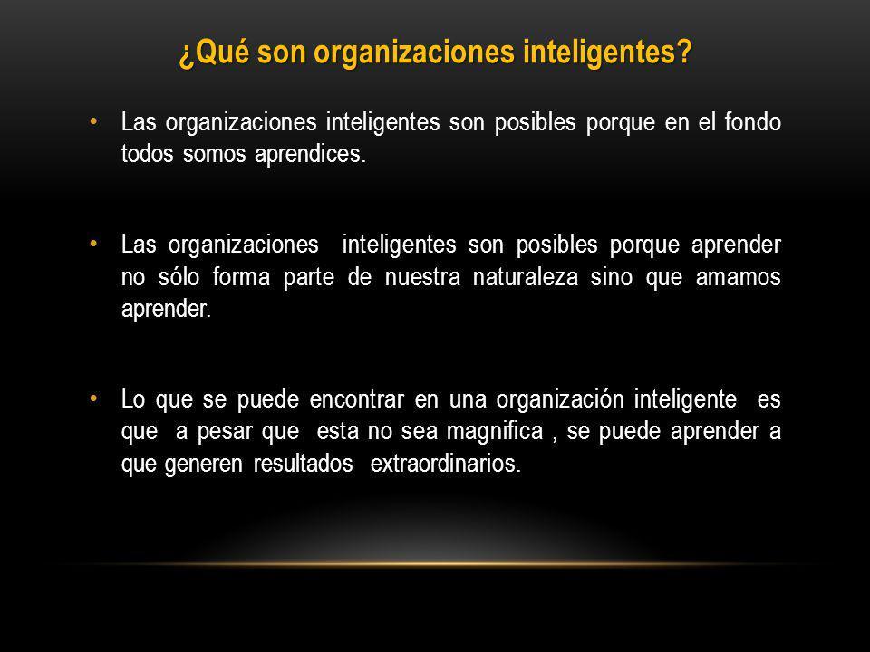 ¿Qué son organizaciones inteligentes