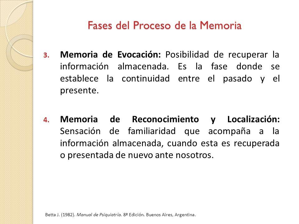 Fases del Proceso de la Memoria
