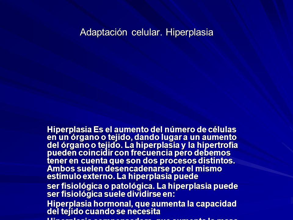 Adaptación celular. Hiperplasia