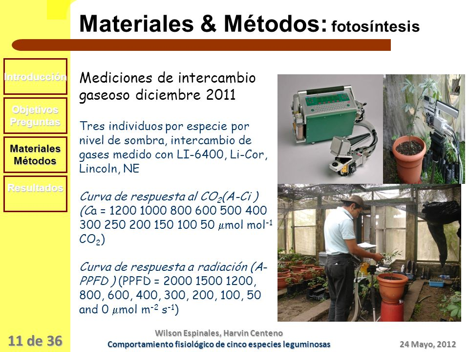 Materiales & Métodos: fotosíntesis