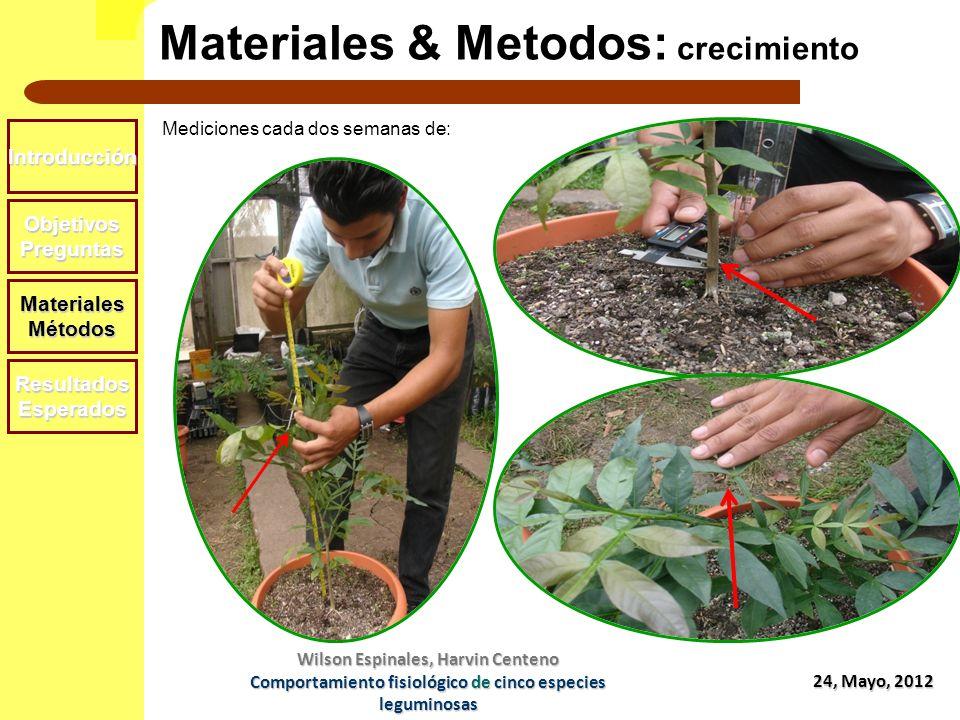 Materiales & Metodos: crecimiento